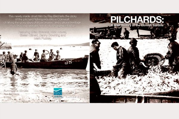 Pilchardsfilm